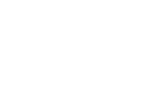 JOJO THE ANIMATION